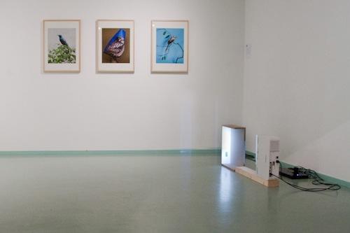 Marieke Gelissen_Galerie Bart Nijmegen_Nieuwe Oogst 2012_1